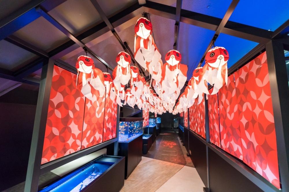 全長100メートルの金魚展示空間