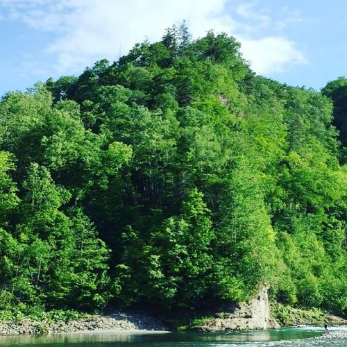 宇宙の森フェス③大自然を楽しもう
