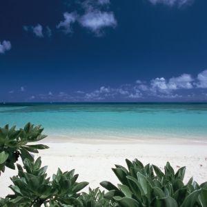 星に愛された「波照間島」。極上の海と自然に恵まれた島でやりたいこと。