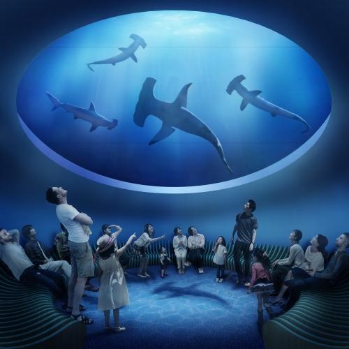 2020年春開業!香川・宇多津に四国最大級の水族館「四国水族館」オープンその2