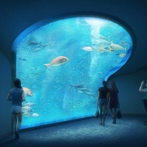 2020年春開業!香川・宇多津に四国最大級の水族館「四国水族館」オープン