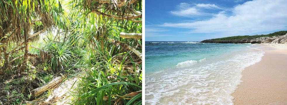 超絶キレイなペムチ浜! 一生もののインパクトを秘める絶景