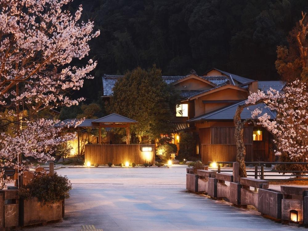 島根の夜桜と文化を堪能する「界 出雲」