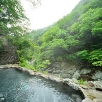 女性専用の野天風呂完備。源泉掛け流しの天然温泉が堪能できる宿