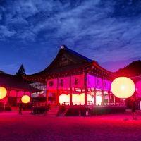 チームラボによる「下鴨神社」のイベントが今年も開催。世界遺産でアートを体感