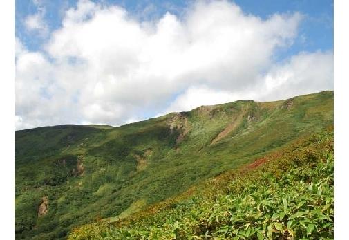 「花の百名山」と称される山