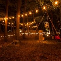 今年も登場!箱根の森の美術館で自然とアートに触れるキャンプイベント開催