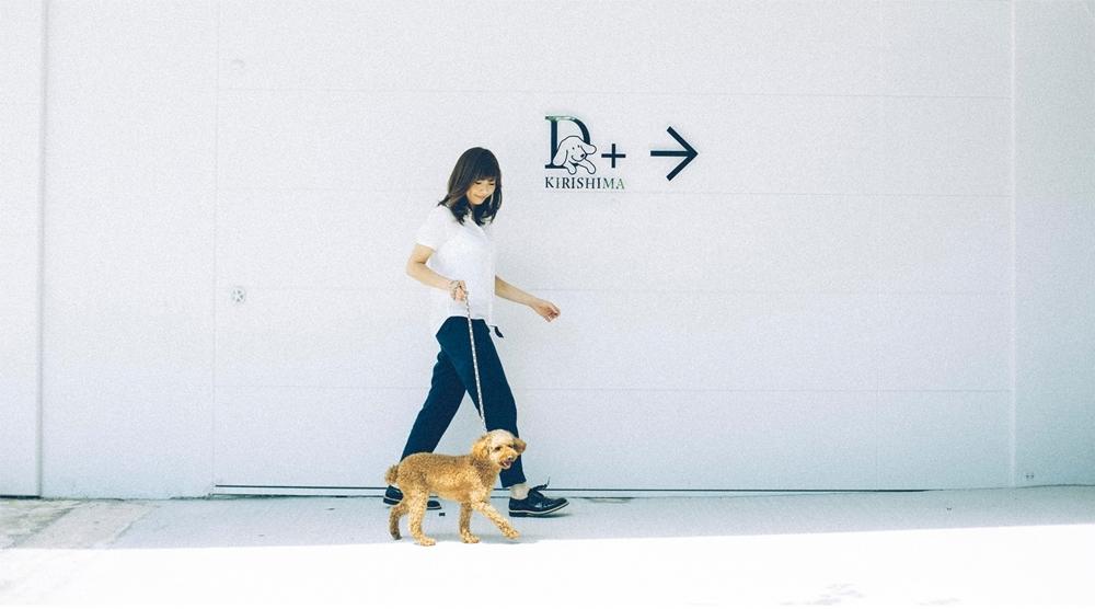 愛犬とのスタイリッシュな旅を実現