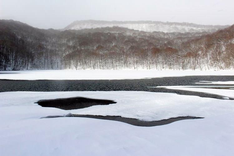 <体験レポート>星野リゾート「奥入瀬渓流ホテル」で冬の自然を満喫してきた!~後編~その3
