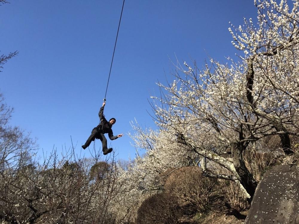 1,000本の梅と関東平野の絶景。「筑波山梅まつり」2月14日~開催その3