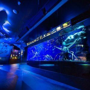 世界でココだけの展示が見られる!「沼津港深海水族館 シーラカンス・ミュージアム」へ行こうその0
