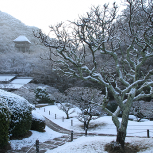 九州・沖縄で庭園めぐり!一度は見ておきたいおすすめスポット10選