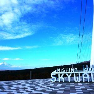 【旅色コンシェルジュが提案】スローな時間、秋を感じる静岡日帰り旅