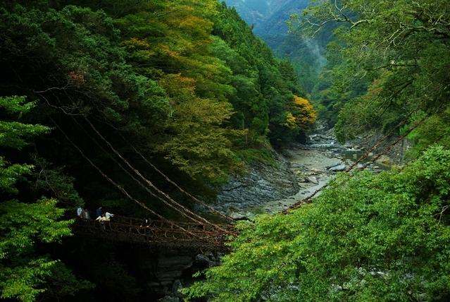 小豆島と名所を巡る4泊5日の旅プラン最終日:「かずら橋」観光