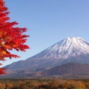 Go Toトラベル、利用率が最も高いのは大阪府民!? 旅色読者に聞いた旅先ランキングその0