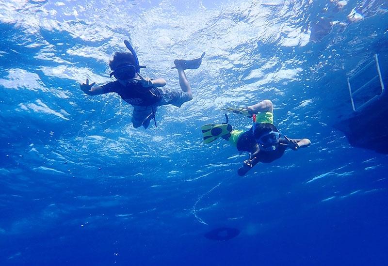 美しい沖縄の海を独り占め! 優雅なクルージングで特別なマリン体験を満喫