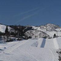 ゲレ食が豊富な駅チカスキー場!新潟県「上越国際スキー場」の魅力