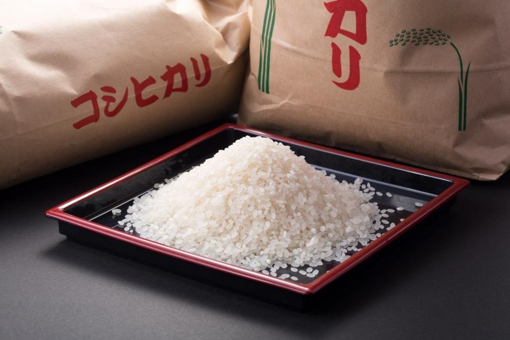 米どころ鳥取のコシヒカリで炊いたご飯は絶品
