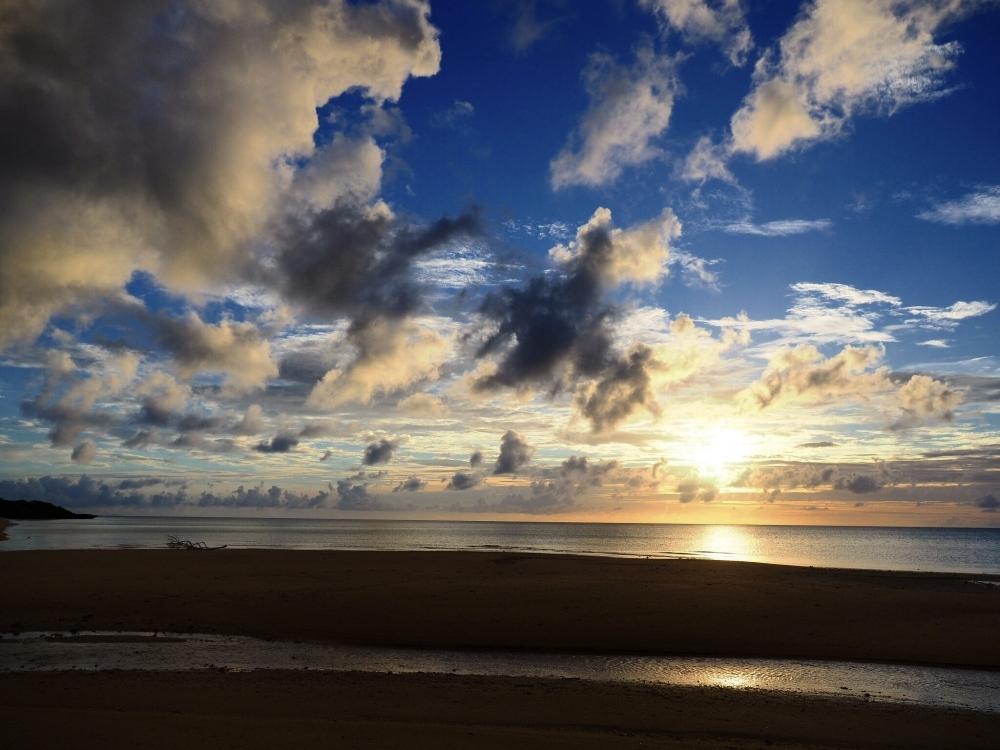 マングローブが茂る嘉良川河口、平久保の浜