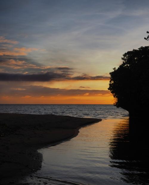 茂みを分け進んで行く、秘密基地みたいなガブルマタ川河口のビーチ