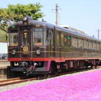 走るダイニング列車「丹後くろまつ号」で海の京都をとことん味わう!