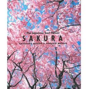お花見できなかった人も! 映画ソムリエ・東さんと蔦屋書店・間室さんが「春」をテーマに映画&本を紹介