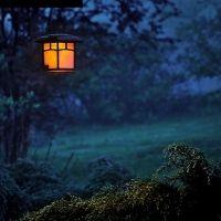 【編集部おすすめ記事ピックアップ】今夏、涼しい夜を過ごすなら…?