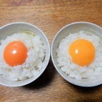 【10月30日はTKG(たまごかけごはん)の日!】実は種類が豊富な東京生まれのたまごを食べ比べてみた。
