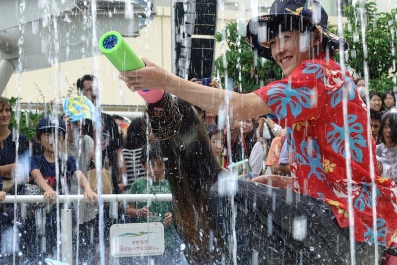⑦夏限定のアシカのびちょびちょ大作戦で童心に!「サンシャイン水族館」(東京都)
