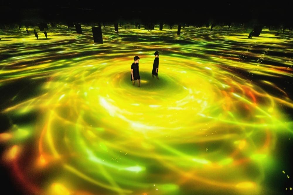 鯉がひまわりに変化。「人と共に踊る鯉によって描かれる水面のドローイング-Infinity」が夏仕様に