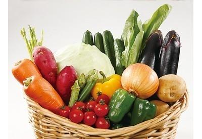 旅色厳選のおすすめお取り寄せ野菜セット③野菜直送!とれたて旬鮮便