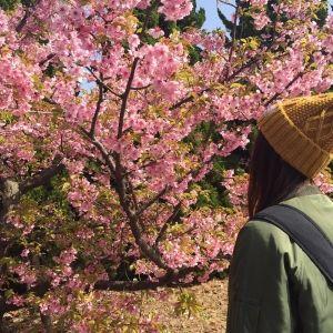 めざせ!47都道府県制覇☆新米御朱印ガールの旅♡
