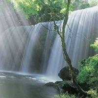 滝の裏側から眺める景色がスゴイ…!熊本県の絶景の宝庫「鍋ヶ滝」