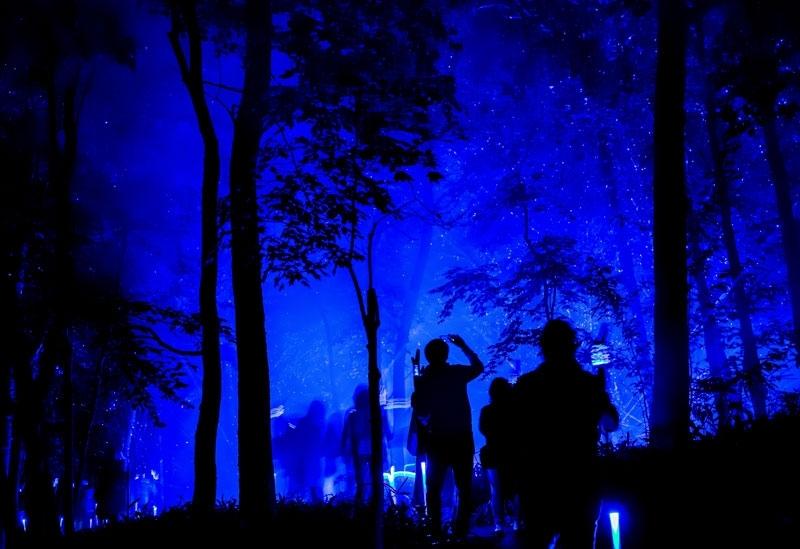 世界初、国立公園内での体験型ナイトウォーク