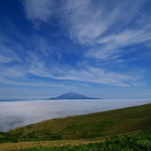 貴重な高山植物の宝庫。「礼文島」で知る、壮大な景色と大地のパワー