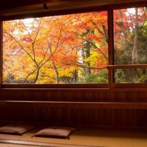 秋ならでは!紅葉風景が楽しめる宿4選