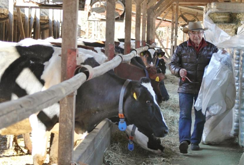 里山の自然を生かした、歴史ある牧場