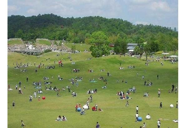 四国最大級の大きさ! 国営讃岐まんのう公園(香川県)