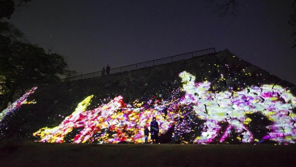 大天守台跡の石垣に住まう花と共に生きる動物達 Animals of Flowers, Symbiotic Lives in the Stone Wall  - Fukuoka Castle Ruins teamLab, 2017, Digital Interactive Installation, Sound: Hideaki Takahashi