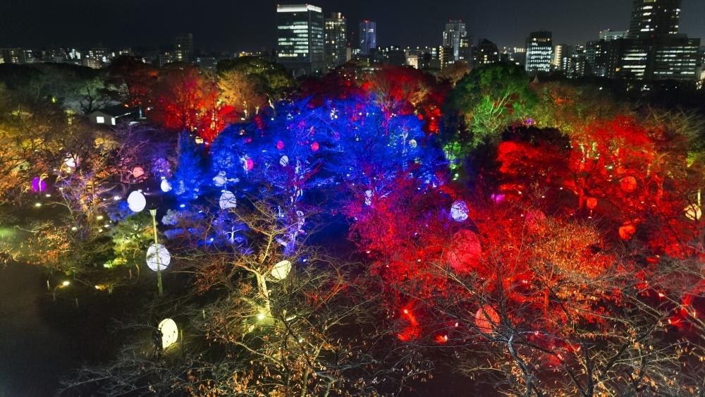 呼応する、たちつづけるものたちと木々 Resisting and Resonating Ovoids and Trees teamLab, 2017, Interactive Digital Installation, Endless, Sound: Hideaki Takahashi
