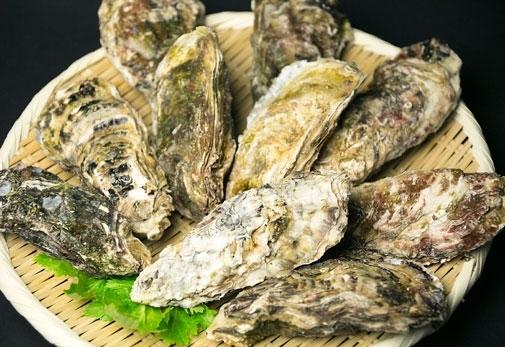 極かき 殻付き牡蠣