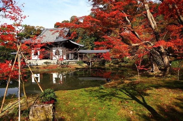 京都ブライトンホテル「秋の貸切プラン」