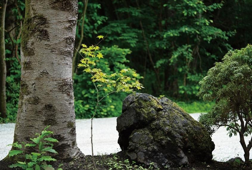 四季折々に豊かな軽井沢の自然に癒される
