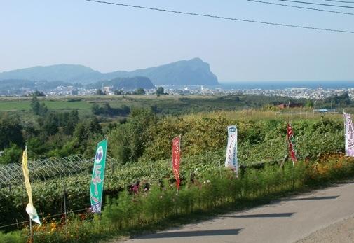 山本観光果樹園(北海道)