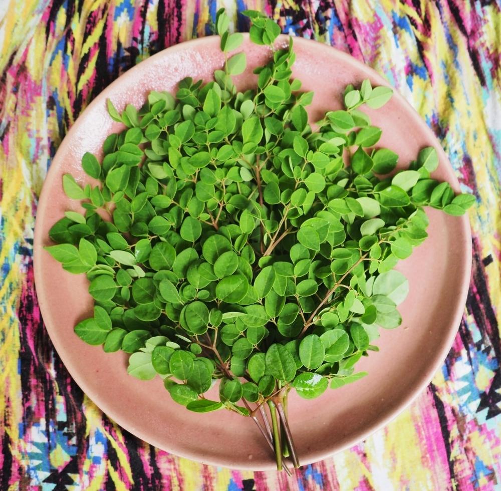 「モリンガ」の栄養価は奇跡的! 美肌とアンチエイジング効果に期待特盛り