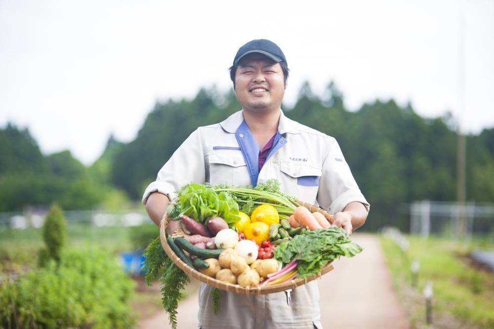 農園で野菜の収穫体験を!