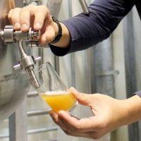 「よなよなエール 大人の醸造所見学ツアー」開催決定。クラフトビール造りの現場を公開