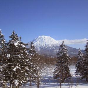 世界に誇るパウダースノー!北海道「ニセコマウンテンリゾート グラン・ヒラフ」