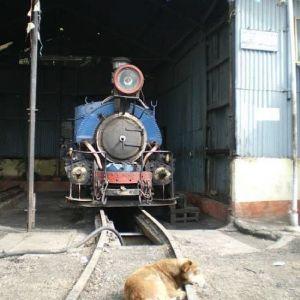 インド版きかんしゃトーマス!? 世界遺産「ダージリン・ヒマラヤ鉄道」とは