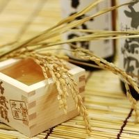 旅の思い出に一杯いかが?北海道の地酒「千歳鶴」